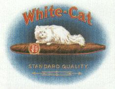 white cat..
